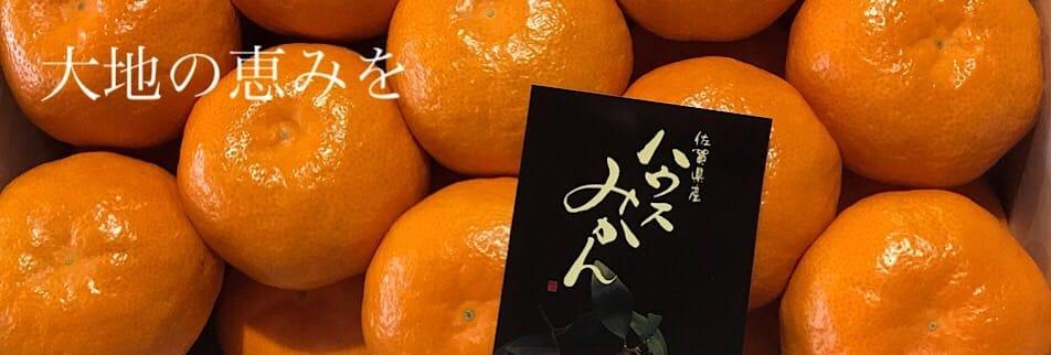 フッチーの渕上青果店|フルーツ|野菜|販売|通販|佐賀|小城